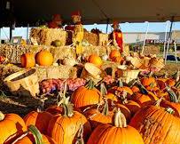 lodge kc pumpkinpatch